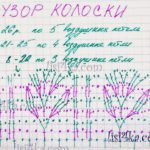 sxema-uzor-koloski-plate-kryuchkom-koloski
